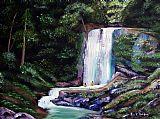 瀑布 - 拉斯玛丽亚波多黎各瀑布
