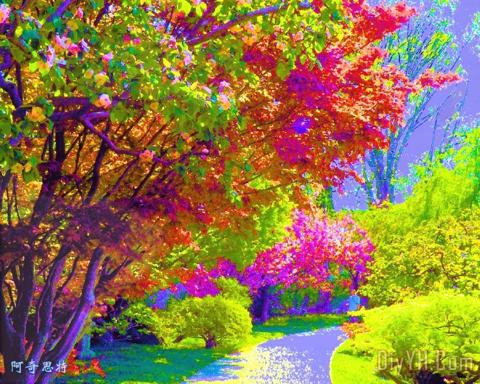 色彩缤纷的树木在春天装饰画
