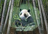 熊猫爱装饰画