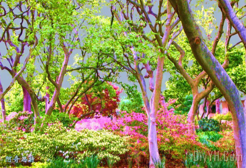 树木和灌木杜鹃花