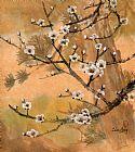- 白梅花与松树