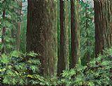 黑暗森林装饰画