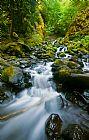 瀑布 - 饥饿溪瀑布