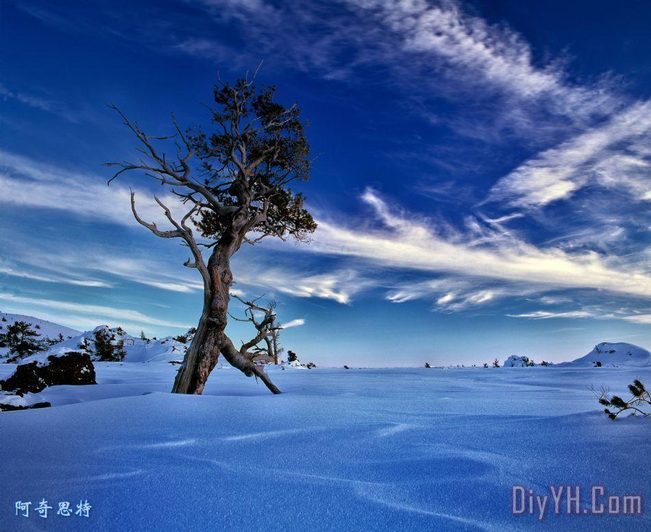冬天的天空装饰画_风景_雪花_蓝天_图片大全_阿奇思特
