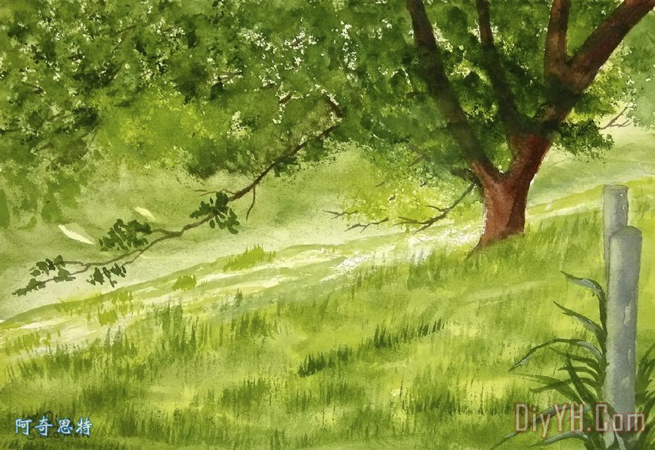 老橡树 - 老橡树装饰画