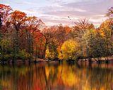 秋天的印象装饰画