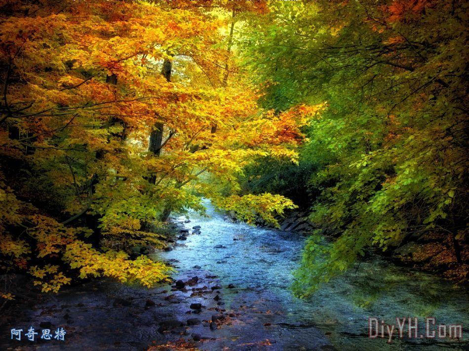 河景装饰画_风景_秋天_树木_河堤_植物的叶子_河景