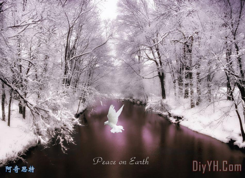 地球上的和平与文字装饰画_风景_树木_季节_自然_雪花