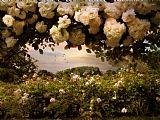 盛产玫瑰装饰画