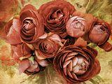 复古玫瑰花静物装饰画