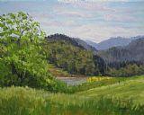 福特的池塘在春天装饰画