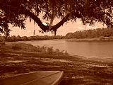 - 马蹄湖怀旧