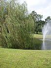 垂柳和喷泉装饰画