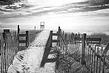 - 海滩在黑与白
