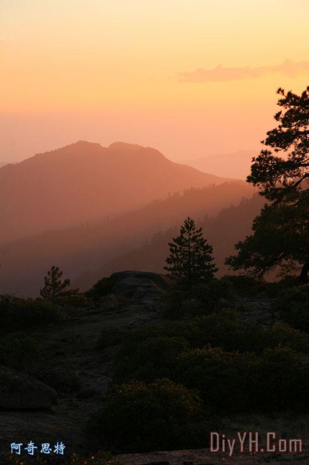 风景 树木 晚霞 美国加州 希望之光 日落油画定制 阿奇思特