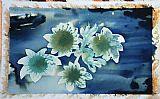 希望和梦想的花湖上装饰画