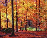 宁静的秋天装饰画