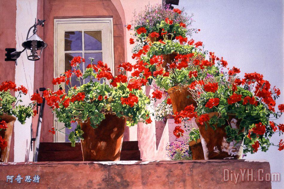 楼梯旁的天竺葵 - 楼梯旁的天竺葵装饰画