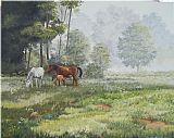 薄雾的早晨放牧装饰画