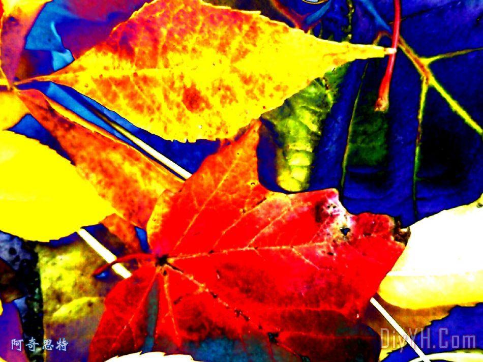更多抽象的树叶装饰画_风景_秋天_自然_落叶_更多抽象