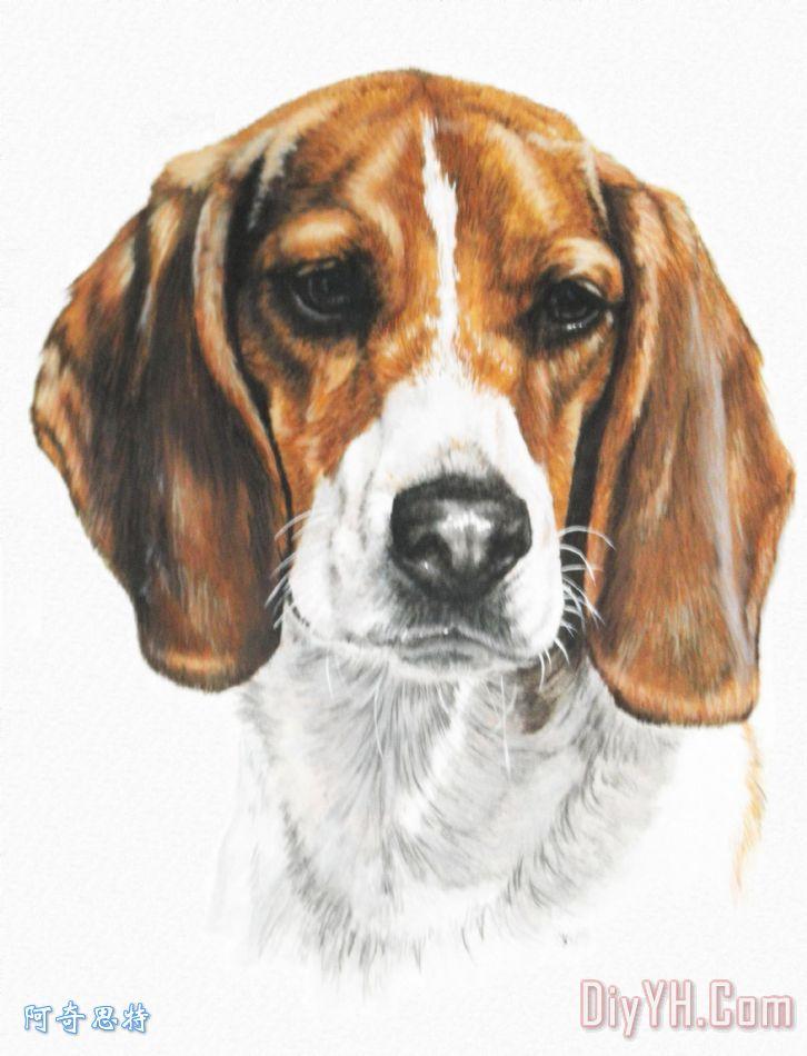 小猎犬装饰画_动物_狗