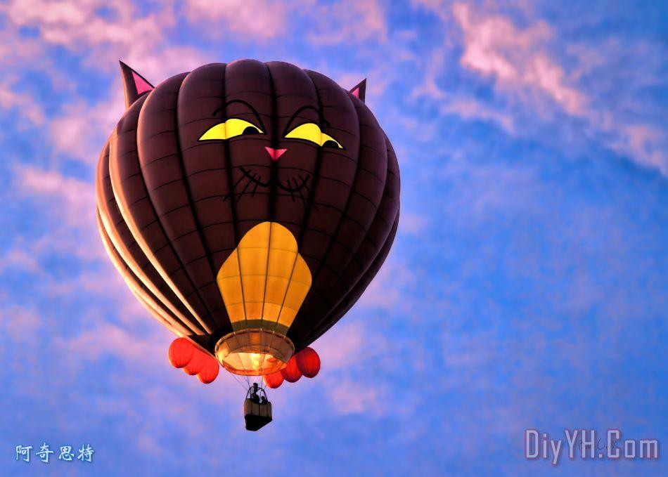 浮动猫 - 热气球装饰画_动物_嬉戏,嬉闹_浮动猫 - 热图片