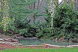 隐藏的池塘装饰画