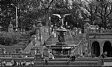 喷泉在中央公园装饰画