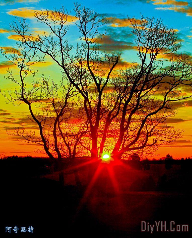 早晨太阳出现 - 早晨太阳出现装饰画