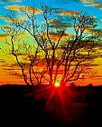 早晨太阳出现装饰画