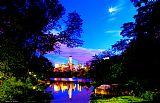 湖的中央公园装饰画