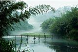 山林木桥装饰画