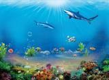 海底世界喷绘装饰画