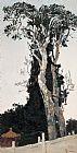 故宫白皮松装饰画